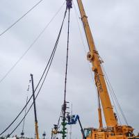Arctic Crane in action